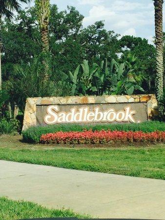 Saddlebrook Resort Tampa: Recent stay