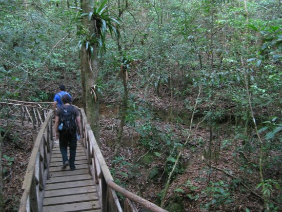 Parque Nacional La Tigra: Trail in La Tigra National Park