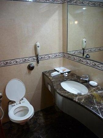 Hotel Airport International : Bathroom