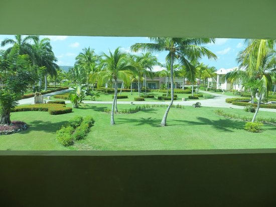 Paradisus Rio de Oro Resort & Spa: grounds - view from room