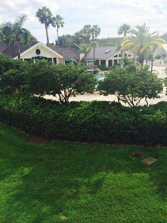 Saddlebrook Resort Tampa: Balcony view
