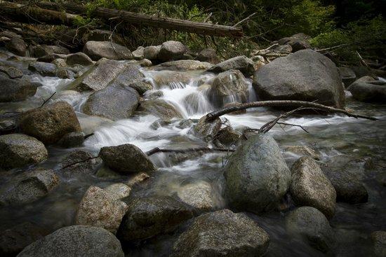Shannon Falls Provincial Park 09