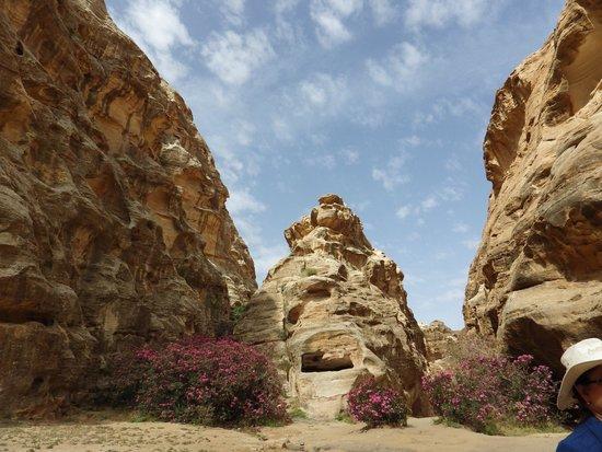 Beidha : Siq al Barid rock formations