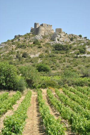 Château d'Aguilar : View from down below
