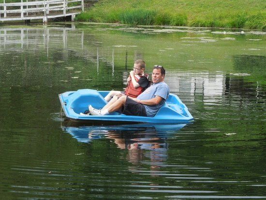 Chestnut Grove Resort: Paddle boat on Lake