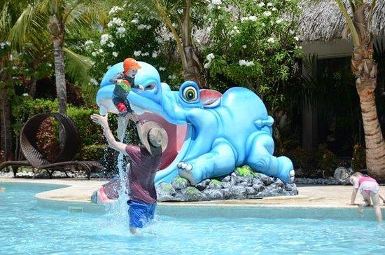 The Reserve at Paradisus Palma Real: Kids pool
