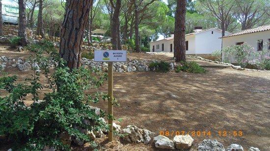 """Camping La Siesta - Calella de Palafrugell: """"Vista Allegre"""""""