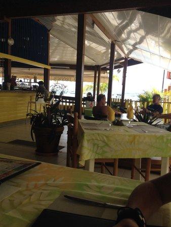 Nid tropical : Vue de la terrasse
