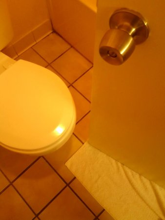 """Quality Inn Pell City: Door-to-toilet clearance is 2"""""""