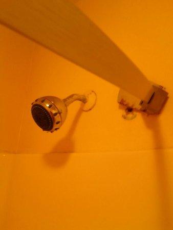 Quality Inn Pell City: Broken bowed shower bar