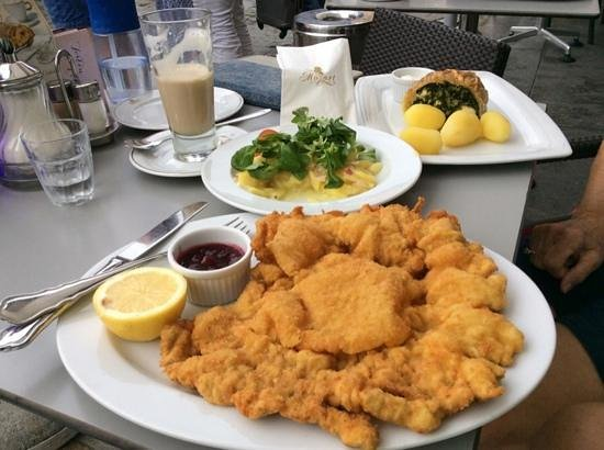 Cafe Mozart: Enormous Wiener Schnitzel and Spinach Sheep Cheese Strudel