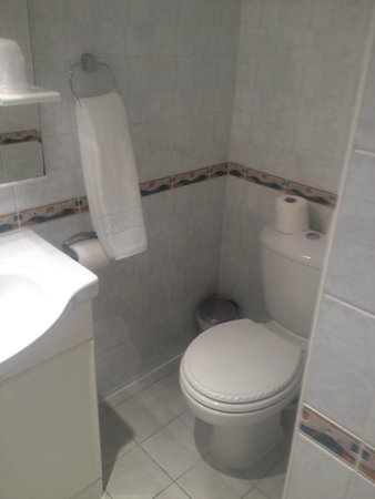 Comfort Inn Buckingham Palace Road : Bagno
