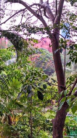 Las Brisas Huatulco: Nature grounds