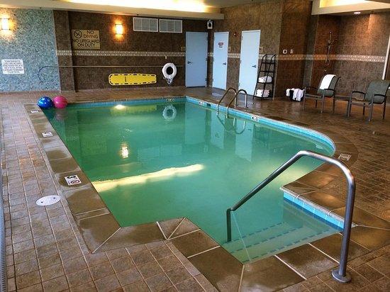 Hilton Garden Inn Billings: Pool