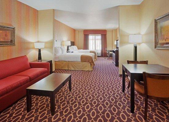 Holiday Inn Express Hotel & Suites Sacramento NE Cal Expo: Deluxe Room