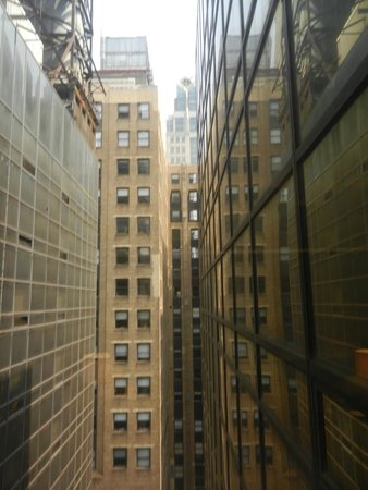 Grand Hyatt New York: The close, glass walls are part of the hotel--one way glass? I wasn't sure, so often lowered bli