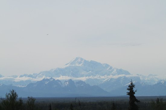 Talkeetna Alaskan Lodge: View from the deck