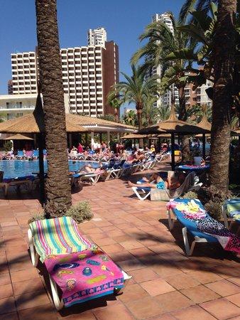 Sol Pelícanos Ocas: Main pool