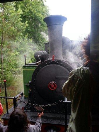 Train Touristique Guitres Marcenais