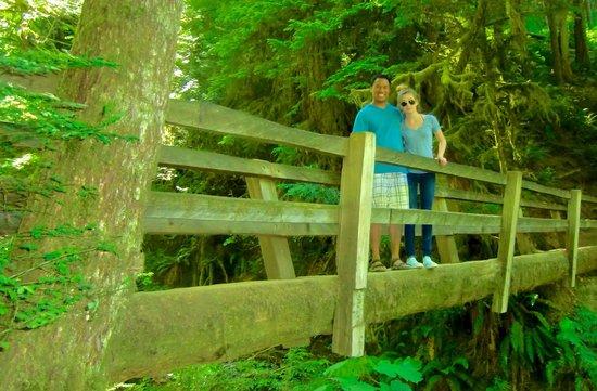 Marymere Falls: Several picturesque wooden bridges
