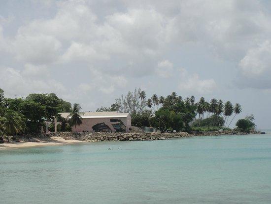 Island Inn Hotel: Beach Bar Area