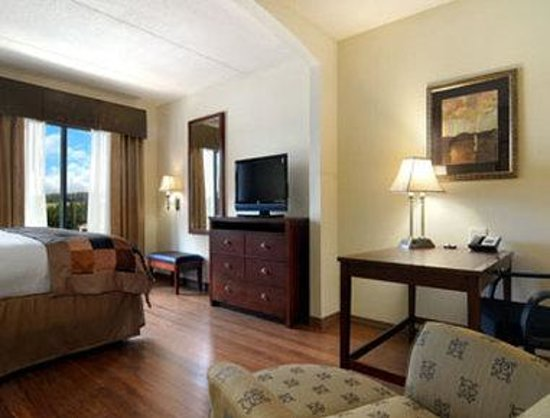 Wingate by Wyndham Tuscaloosa : Standard King Bed Room