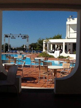 Hotel Flamingo: Pool/bar area