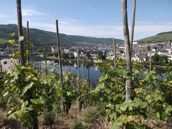 Marchenhotel : Bernkastel view from the wineyards