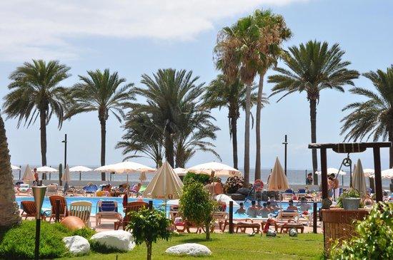 Sol Tenerife : 2