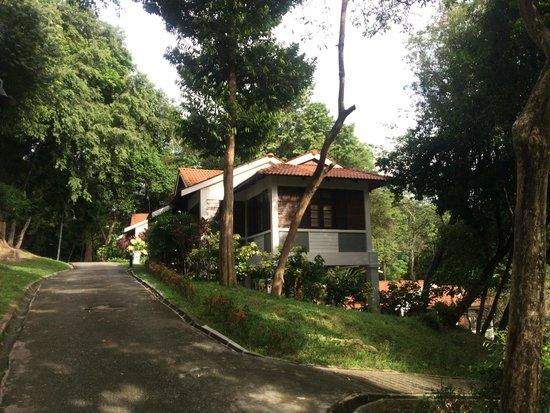 Sun Yi Villas: Our standalone villa