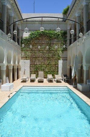 Riad Nashira & Spa : piscine