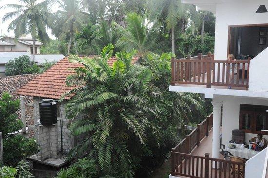 Unawatuna Nor Lanka Hotel : Вид из отеля