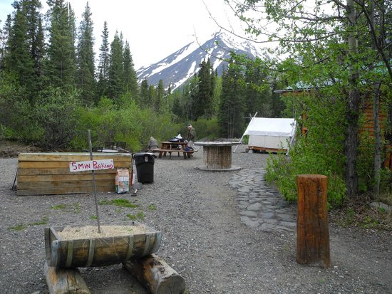 Denali Mountain Morning Hostel and Cabins: Tents are next to the fire pit and stream.