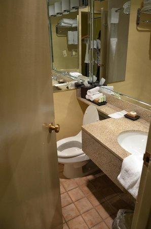 Best Western Premier Grand Canyon Squire Inn: CUARTO DE BAÑO