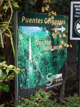 Heliconia Hotel: Close to ziplines and hanging bridges