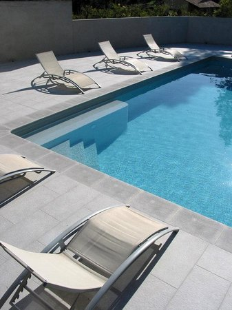 Le Relais Des Chartreuses : swimming pool