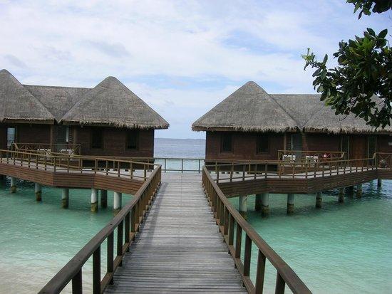 Bandos Maldives : Villas en el agua