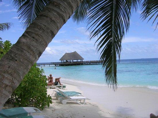 Bandos Maldives : Playa
