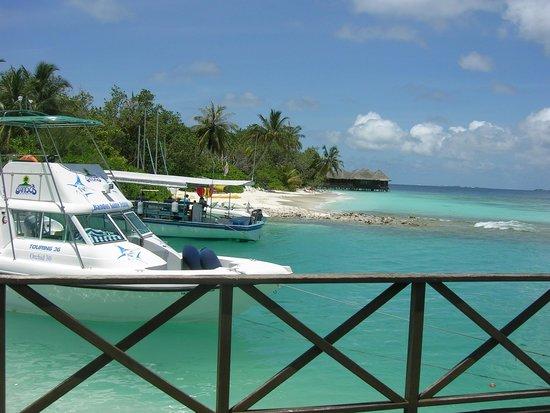 Bandos Maldives : Bar
