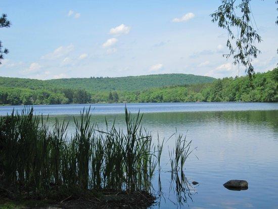 Skytop Lodge : The lake at Skytop.