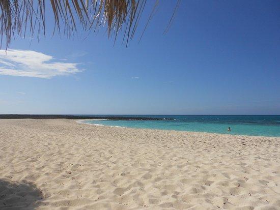 Un seul baigneur pour toute la plage!