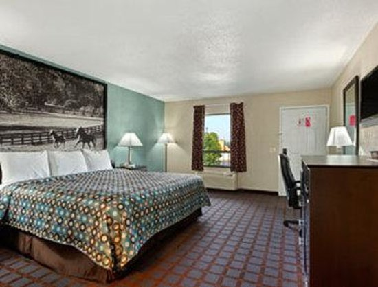Super 8 Paducah KY : Standard One King Bed Room.