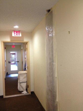 Sonesta ES Suites South Brunswick - Princeton: Walkway to our suite