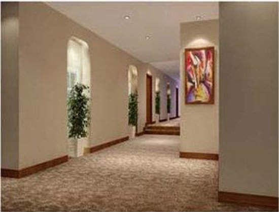 Suba Chunxi Hotel : Corridor