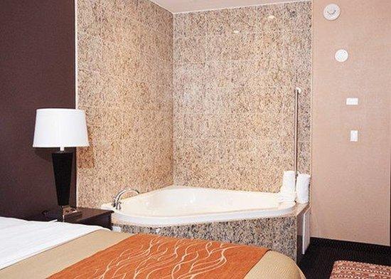 Comfort Inn & Suites Ozone Park: room2