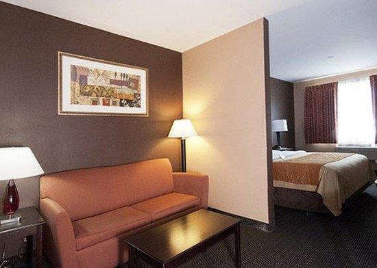Comfort Inn & Suites Ozone Park: SNK