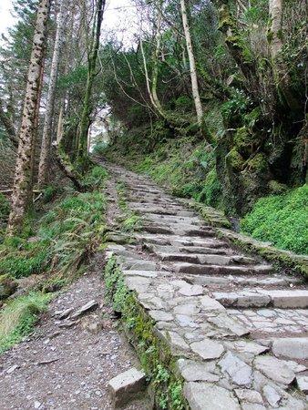 Torc Waterfall: enchanting