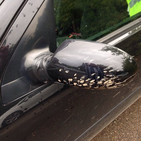 Best Western Gatwick Skylane Hotel: How do they get mud this on wing mirror when they are just parking your car?