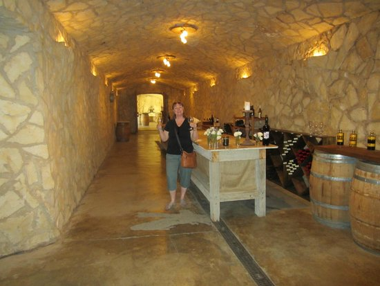 Grapeline Wine Tours Santa Barbara: Tasting room at Sunstone Vinyards