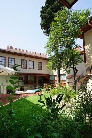 Mediterra Art Hotel : Bahce